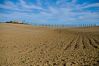 A panoramic view of Tuscany hills.Un tipico panorama delle colline Toscane