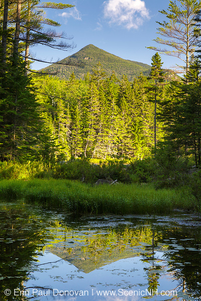 Southern end of Owl's Head Mountain from Black Pond on the side of Black Pond Trail in Lincoln, New Hampshire during the summer months. Owl's Head is located within the boundaries of the 45,000-acre Pemigewasset Wilderness.