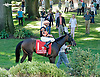 Majestic Jess before The Kent Stakes (gr 2) at Delaware Park on 9/7/13