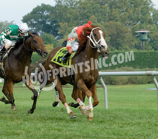 Omega Three Pete winning at Delaware Park on 9/23/09