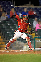 Ohio State Buckeyes catcher Jalen Washington (2) during a game against the Pitt Panthers on February 20, 2016 at Holman Stadium at Historic Dodgertown in Vero Beach, Florida.  Ohio State defeated Pitt 11-8 in thirteen innings.  (Mike Janes/Four Seam Images)