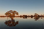 Cooper Creek crossing Birdsville Track flooded with water at sunrise