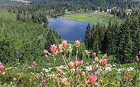 Taken from a trail above the base of Brighton ski resort.