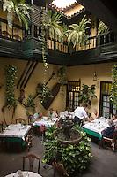 "Europe/Espagne/Iles Canaries/Tenerife/Puerto de la Cruz:  Patio du restaurant ""Régulo"""