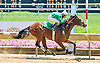 Happy Landing winning at Delaware Park on 6/24/15