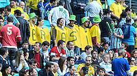PORTO ALEGRE, RS, 09.06.2013 - AMISTOSO INTERNACIONAL - BRASIL X FRANÇA - Torcedores antes partida entre Brasil x França jogo amistoso na Arena Grêmio em Porto Alegre neste domingo, 09. (Foto: Vanessa Carvalho / Brazil Photo Press).