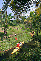 Aleppey, Alappuzha, Kerala, India, April 2008. The backwaters of Kerala are reknowned for its rich culture. The most adventurous way to explore them is by kayak. We joined Kalypso Adventures for our adventure. Photo by Frits Meyst/Adventure4ever.com