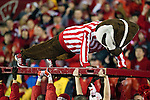 Wisconsin Badgers mascot Bucky Badger does pushups after a touchdown during an NCAA Big Ten Conference college football game against the Penn State Nittany Lions on November 26, 2011 in Madison, Wisconsin. The Badgers won 45-7. (Photo by David Stluka)