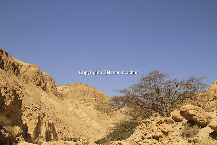 Israel, Wadi Mishmar in the Judean desert