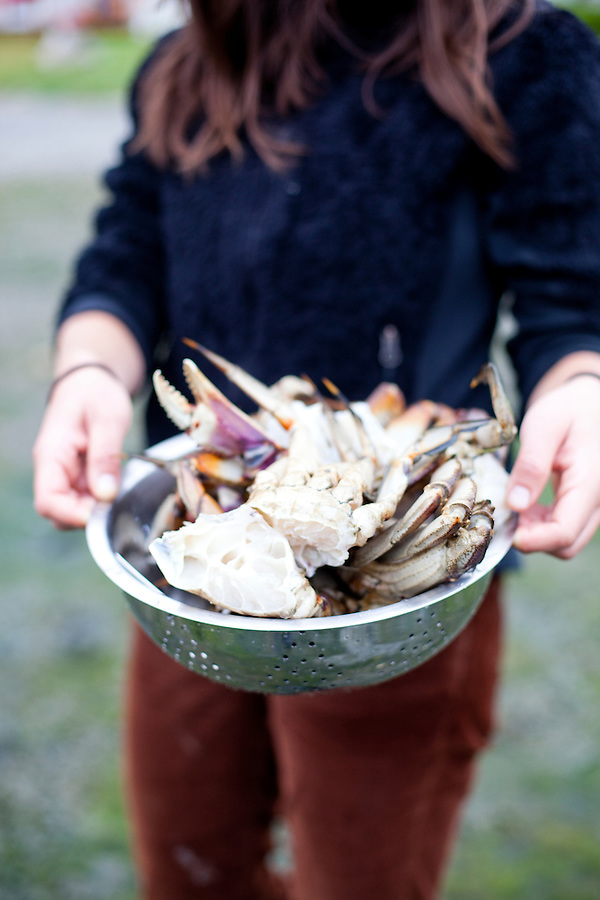 Preparing freshly caught dungeness crab on the shores of Lopez Island, WA, USA.