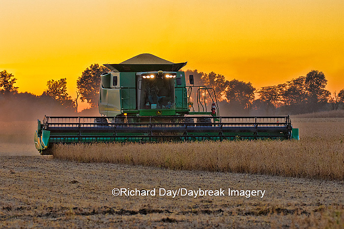 63801-07109 Farmer harvesting soybeans at sunset, Marion Co., IL