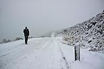 Neve de inverno no Parque Nacional de Sao Joaquim. Urubici. Santa Catarina. 2013. Foto de Andre Arcenio.