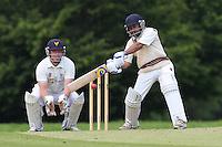 Cricket 2014-05