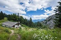 Deutschland, Bayern, Chiemgau, Ruhpolding: die Hoerndlalm (Bergwachthuette), rechts die Auslaeufer des Hochkienbergstocks | Germany, Bavaria, Chiemgau, Ruhpolding: Hoerndlalm (mountain rescue hut)