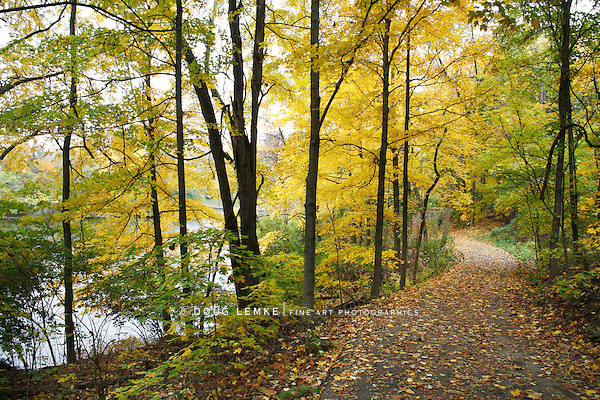A Shaded Walking Path Next To A Lake In Autumn At The Park, Sharon Woods, Southwestern Ohio, USA