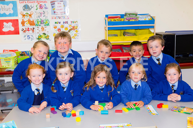 Just Starting<br /> -----------------<br /> On their first day at school in Kilmurry NS,Cordal last Monday are,front L-R Shauna Walsh,Ciara Costello,Anna McCarthy,Poppy Smith and Rachel O'Donoghue