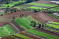 Plantaçao de hortaliças em Aguas Lindas. Goias. 2009. Foto de Ubirajara Machado.