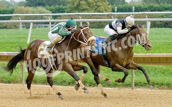 The Great Gonzo winning at Delaware Park on 10/8/12