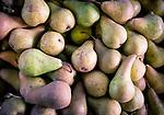 9.21.18 - Mingling Pears...