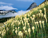 Morning light on Beargrass and clearing storm below Logan Pass; Glacier National Park, MT