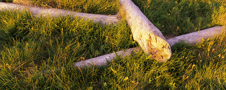 Thorshofn north Iceland. Driftwood close to the beach. Images taken with Hasselblad Xpan camera and Fuji Velvia film.