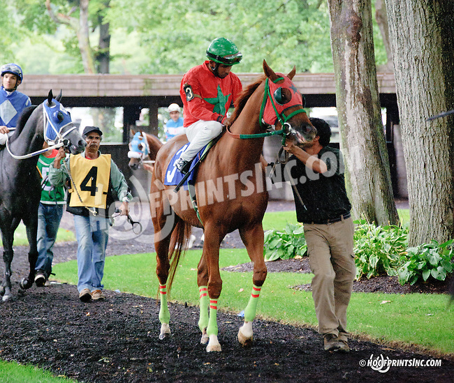 Galiana before The Tax Free Shopping Distaff on Owners Day at Delaware Park on 9/13/14