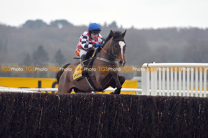 The Giant Bolster ridden by Tom Scudamore in the Betfair Denman Chase Grade 2 Cl1 3m  - Horse Racing at Newbury Racecourse, Berkshire - 17/02/2012 - MANDATORY CREDIT: Martin Dalton/TGSPHOTO - Self billing applies where appropriate - 0845 094 6026 - contact@tgsphoto.co.uk - NO UNPAID USE.