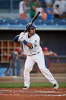 Charlotte Stone Crabs catcher David Rodriguez (13) at bat during a game against the Palm Beach Cardinals on April 20, 2018 at Charlotte Sports Park in Port Charlotte, Florida.  Charlotte defeated Palm Beach 4-3.  (Mike Janes/Four Seam Images)