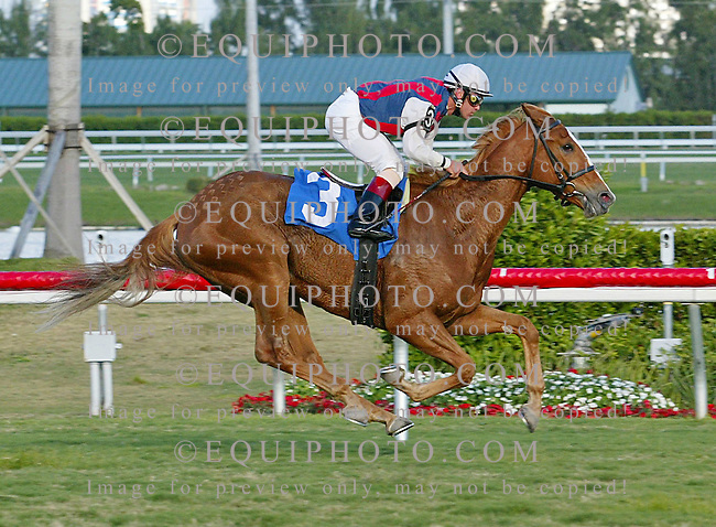Red Birkin with rider Javier Castellano wins the 9th race at Gulfstream park in Hallandale, Florida on Monaday February 19th, 2007. Photo by Justin Dernier/EQUI-PHOTO