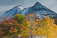 Grandfather Mountain autumn adorned with hoarfrost