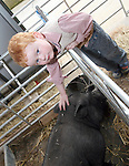 Jack Boyle petting a pig at the Opening of The Red Mountain Open Farm...Photo NEWSFILE/Jenny Matthews.(Photo credit should read Jenny Matthews/NEWSFILE)....This Picture has been sent you under the condtions enclosed by:.Newsfile Ltd..The Studio,.Millmount Abbey,.Drogheda,.Co Meath..Ireland..Tel: +353(0)41-9871240.Fax: +353(0)41-9871260.GSM: +353(0)86-2500958.email: pictures@newsfile.ie.www.newsfile.ie.FTP: 193.120.102.198.