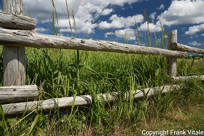 Fence & Marsh, Prince Edward Island, Canada