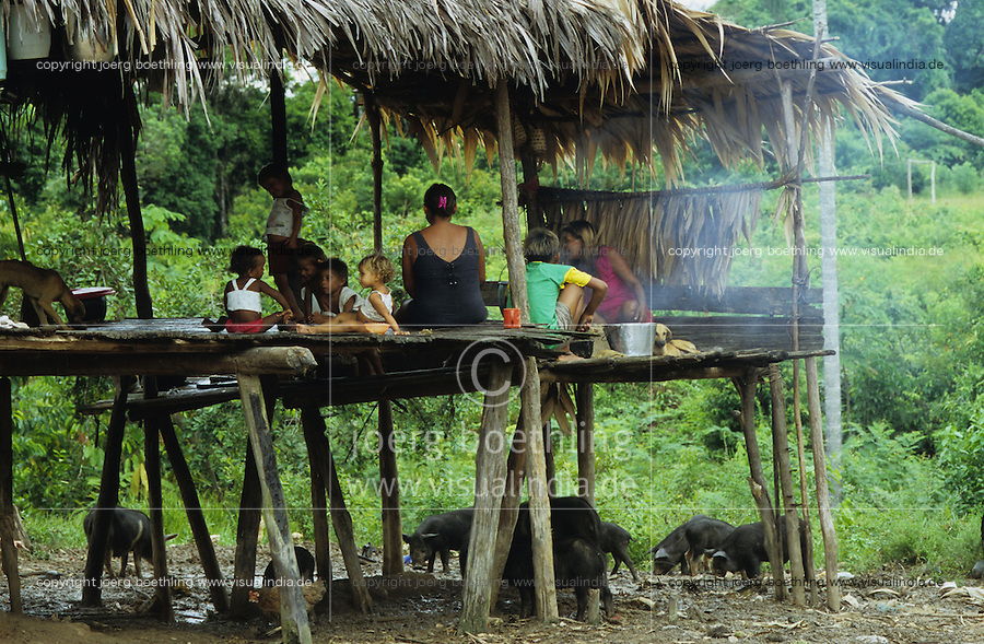 BRAZIL, Amazon, rainforest, Madiha or Kulina indios in village Degredo at river Bau a branch of river Jurua, woman with children in kitchen of hut / BRASILIEN, Amazonas, Regenwald, Indianer vom Stamm der Madiha auch Kulina im Indianerdorf Degredo am Fluss Bau ein Nebenfluss des Jurua, Frau mit Kindern in Kueche ihrer Huette, Schweine fressen Kuechenabfall unter Hütte