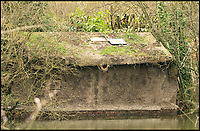BNPS.co.uk (01202 558833)<br /> Pic: RobertFullerGallery/BNPS<br /> <br /> Robert Fuller's artificial riverbank with a nest and a hide where he could watch the birds without disturbing them.<br /> <br /> Watch the birdie!<br /> <br /> These incredible photographs give a rare insight into the secret underground world of kingfishers raising their young.<br /> <br /> Wildlife photographer Robert Fuller undertook his most ambitious project to date by creating a 16ft long artificial riverbank with a nest and a hide where he could watch the birds without disturbing them.<br /> <br /> It allowed him to get unique video footage of the elusive bird and he even witnessed eggs being laid.