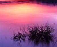 Sunset Mono Lake Lee Vining California