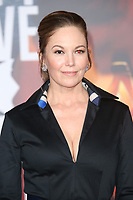 LOS ANGELES, CA - NOVEMBER 13: Diane Lane at the Justice League film Premiere on November 13, 2017 at the Dolby Theatre in Los Angeles, California. Credit: Faye Sadou/MediaPunch