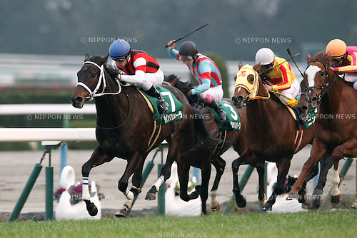 (L-R) Win Primera (Yuga Kawada), Siberian Superb (Kota Fujioka), Ninja (Shigefumi Kumazawa), T M Taiho (Suguru Hamanaka),<br /> JANUARY 5, 2016 - Horse Racing :<br /> Win Primera ridden by Yuga Kawada wins the Sports Nippon Sho Kyoto Kimpai at Kyoto Racecourse in Kyoto, Japan. (Photo by Eiichi Yamane/AFLO)