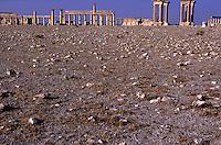 SIRIA - sito di Palmira(Tadmor) il colonnato visto dal deserto -Guglielminotti 9/2003
