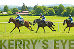 Castleisland Races on saturday........................................................................... ........