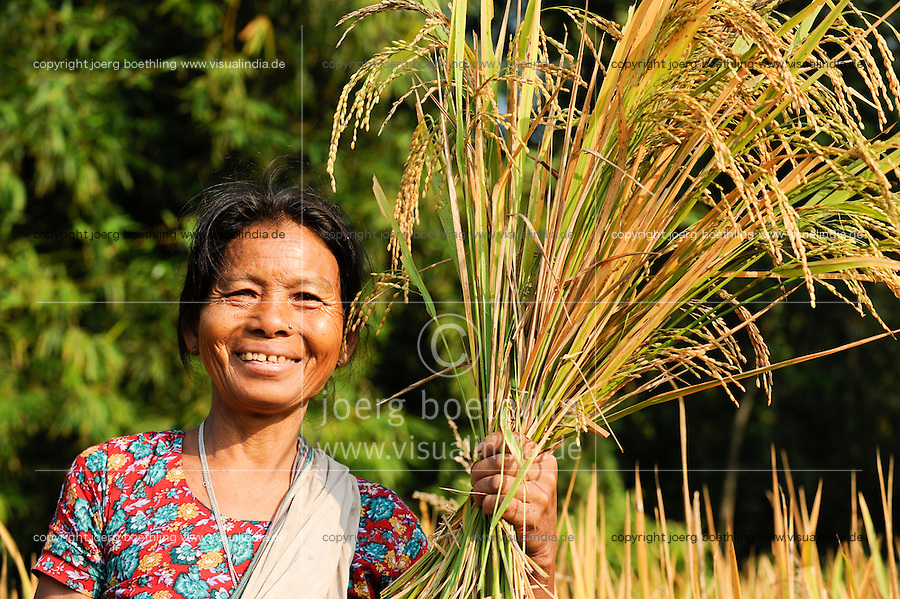 BANGLADESH Madhupur, Garo woman carry rice crops after harvest, Garos is a ethnic and christian religious minority / Bangladesch, Region Madhupur, Garo Frau Moishoni Nokrek bringt die Reisernte ein , Garos sind eine christliche u. ethnische Minderheit - NUR FÜR REDAKTIONELLE NUTZUNG, Kein PR !