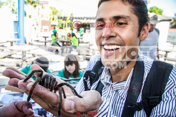 FERIA DEL LIBRO 2010. HILLOMEX.<br /> Fotografo Fausto Ibarra juega con una tarantula durante el Taller de Aragnidos en la Feria del Libro en parque infantil.<br /> <br /> &copy;Foto: LuisGutierrezNORTEPHOTO
