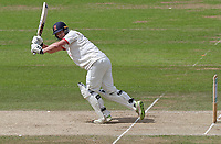 Tom Westley of Essex in batting action during Nottinghamshire CCC vs Essex CCC, Specsavers County Championship Division 1 Cricket at Trent Bridge on 1st July 2019