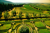 The Italian garden and vineyards of the Castello di Brolio, Chianti, Tuscany, Italy