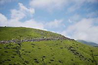 Biggest climb of the day: Port de Bal&egrave;s (HC/1755m/11.7km/7.7%)<br /> <br /> <br /> 2014 Tour de France<br /> stage 16: Carcassonne - Bagn&egrave;res-de-Luchon (237km)