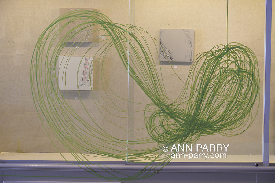 """Roslyn, New York, USA. January 31, 2015. At Artists Reception for """"The Alchemists"""" is work by artist Karine Falleni, documenting movement, including installation with green automotie tape, at Bryant Library. Curated by Ellen Hallie Schiff."""