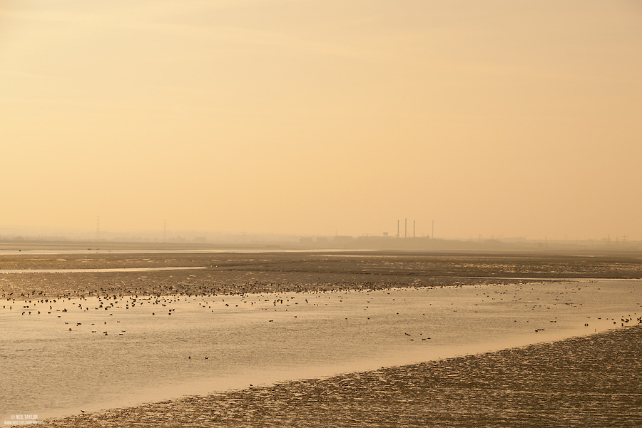 Low Tide in The Swale Estuary