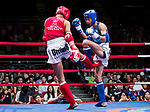 Lam Lit Tung (Red) of Hong Kong fights against Nitamizu Toshiyuki (Blue) of Japan in the male muay 57KG division weight bout during the East Asian Muaythai Championships 2017 at the Queen Elizabeth Stadium on 13 August 2017, in Hong Kong, China. Photo by Yu Chun Christopher Wong / Power Sport Images