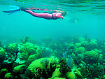 Dry Rock reef snorkel