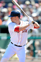 Boston Red Sox outfielder Daniel Nava #29 during a Spring Training game against the Miami Marlins at JetBlue Park on March 27, 2013 in Fort Myers, Florida.  Miami defeated Boston 5-1.  (Mike Janes/Four Seam Images)