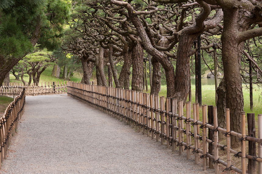 An avenue of artfully sculpted pines is a feature of the strolling garden at Ritsurin Koen, Takamatsu, Japan.